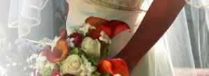 Heather Hendrickson Wedding flowers