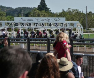 Sonoma County Fair Horse Racing